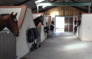 Parklands Farm - Sparks Equestrian
